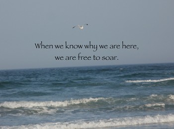 When we know why we are here, we are free to soar.