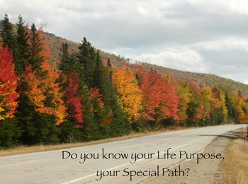 Do you know your Life Purpose, your Special Path?